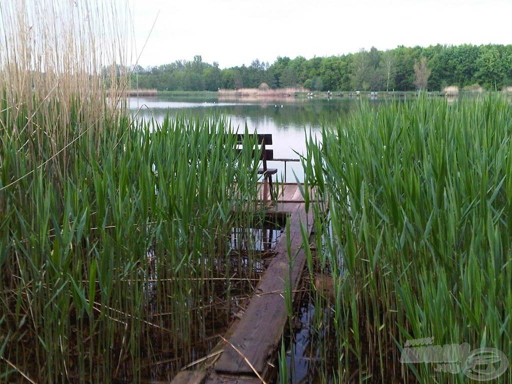 Az aznapi horgászhelyem