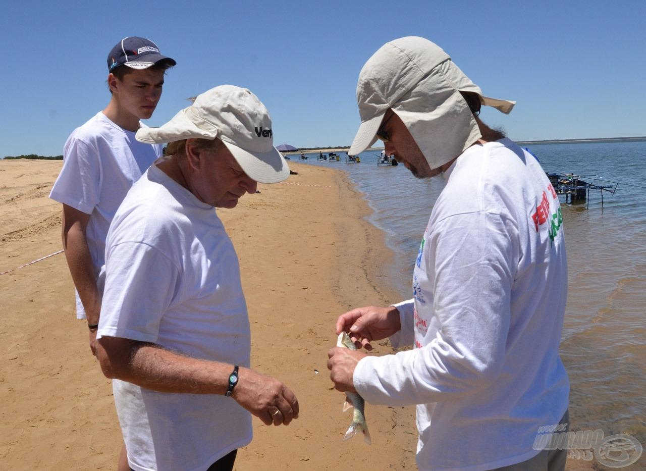 Walter Tamás mutatja a yellow fisht a holland kapitánynak