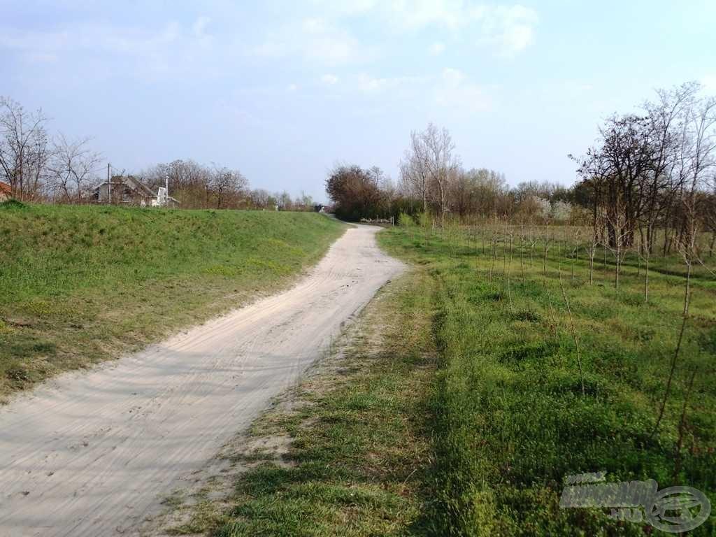 Borzasztó út vezet a Duna-gát mellett a tóig