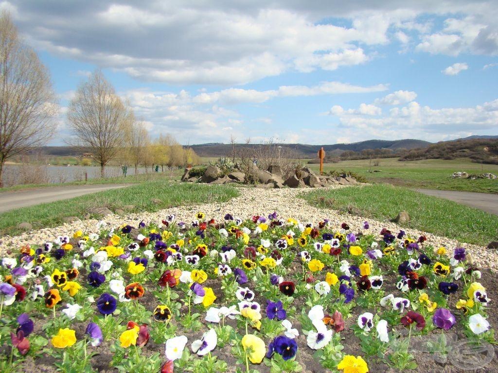 Köszönet Mindenkinek, a tavasznak is
