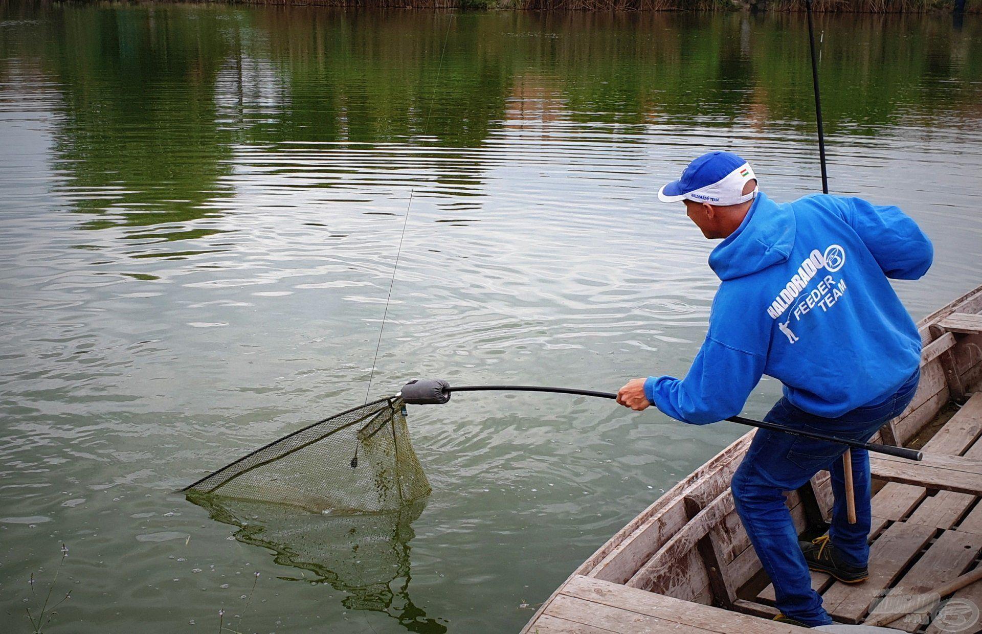 Az amurok gyakorlatilag megszállták az etetést, így a horgászat igazán pörgőssé vált