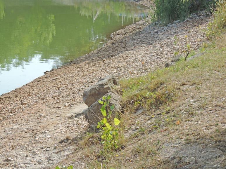 Itt, a kavicsos részen tavasszal még víz volt