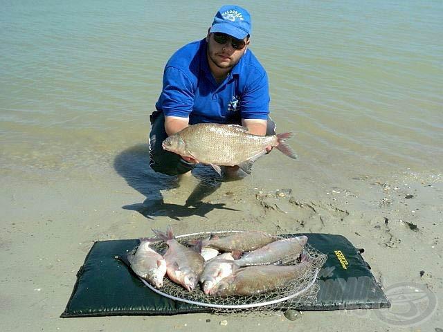 Dunai teríték (egy előző horgászatom során) kapitális dévérekből, a bandanagy 2,5 kg