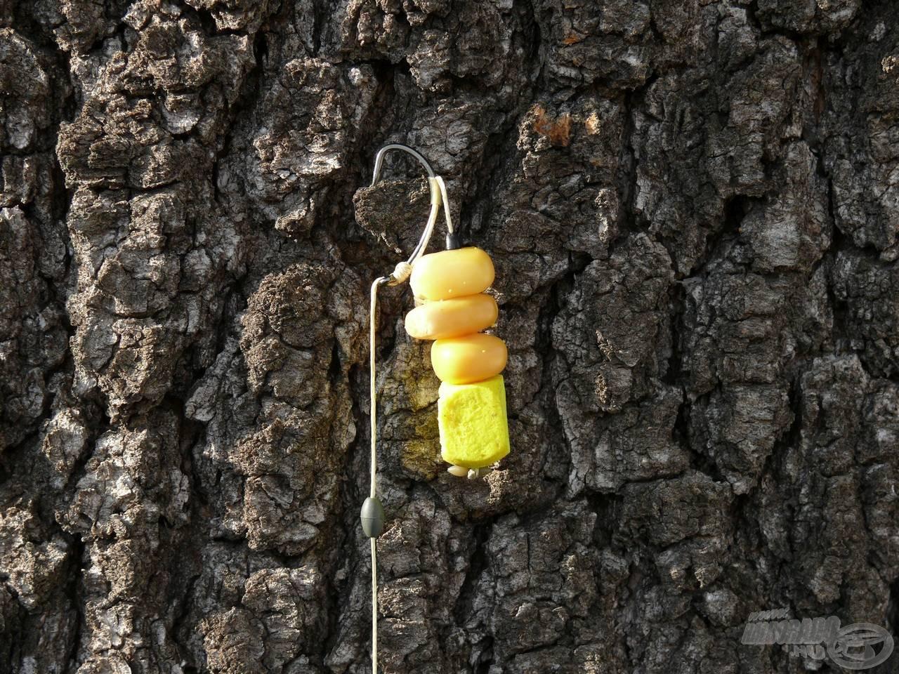 Az amuros csalikombináció: 3 szem kukorica és egy faragott Édes Ananász pop-up bojli a balanszírozás végett