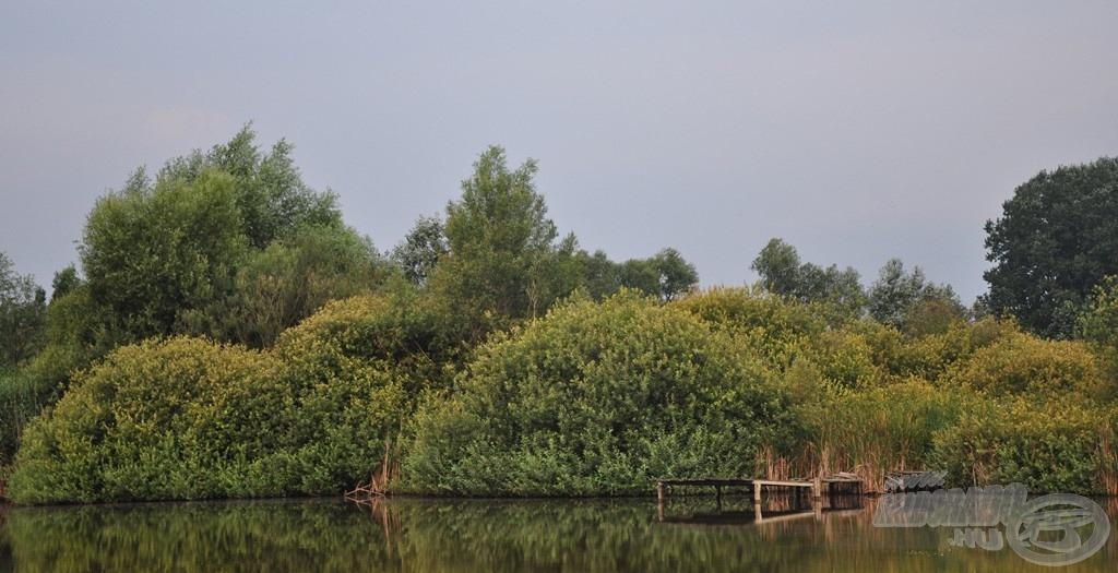 Igazi vadregényes, nem hétköznapi a tó túlpartja