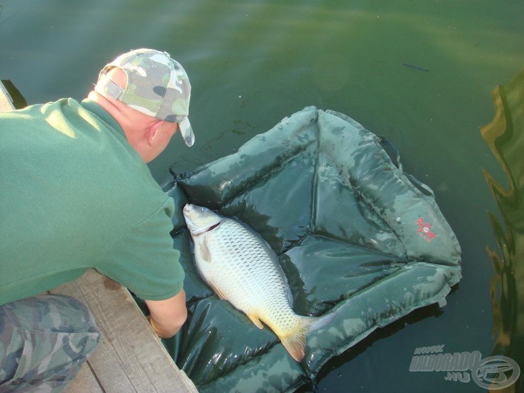 """""""Felrakod a vízre a matracot és ráugranak a halak. De zsír."""" (Ez volt egy cimborám első gondolata a pontymatracról)"""