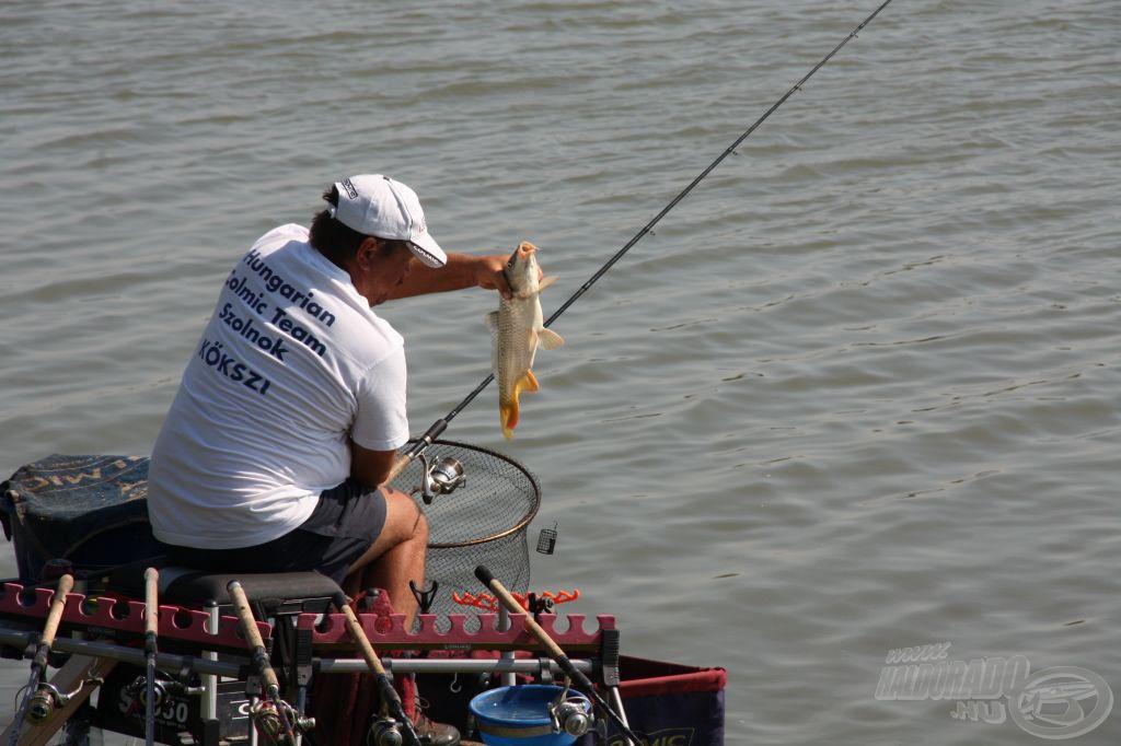 Az A szektor első nagyobb testű hala