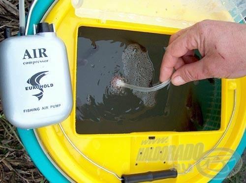 A kishalak szállítása során mindenképpen használjuk a levegőztető készüléket