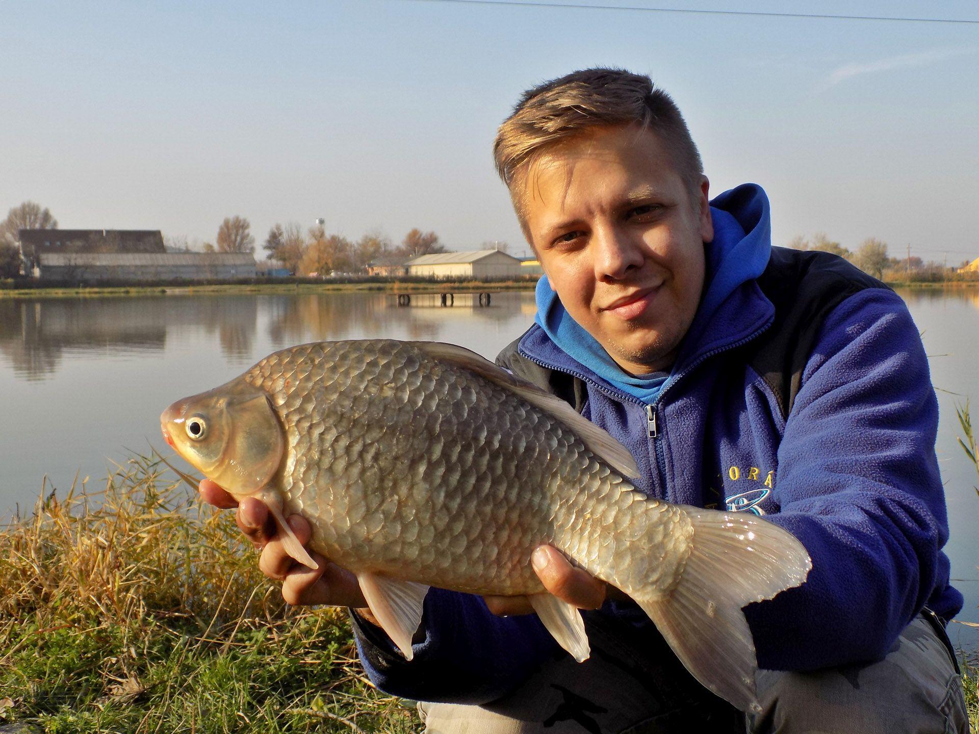 A horgászat folyamán a nagytestű kárászok megfogása ugyanolyan örömet jelentett…