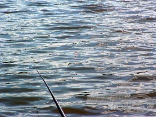 Az Exner úszó kiválóan jelezte még a feltolós kapásokat is