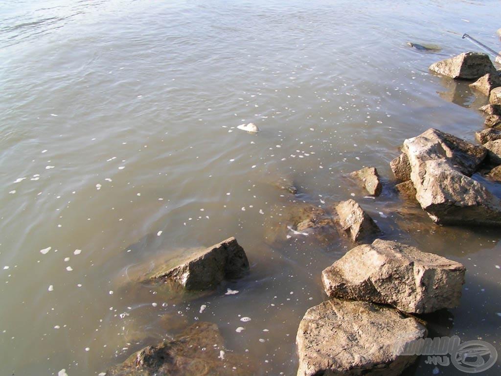 Habos Duna-part. Ugye, az sem normális, hogy olykor habzik a víz?