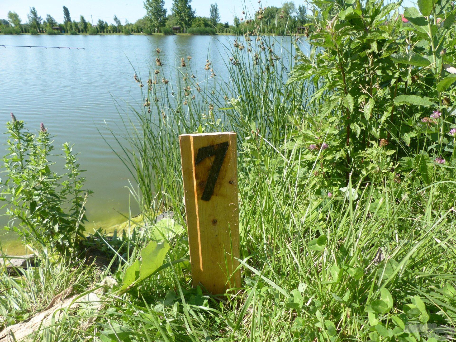 A tó túlsó harmadában választottam ki a horgászhelyemet