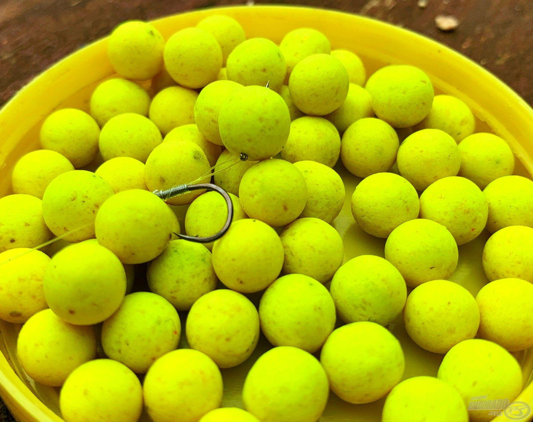 Gábor előszeretettel alkalmazta a külső pályán a Quatro Fluo Pop Up 8 mm-es csalik közül a citromsárga, ananászos golyócskát