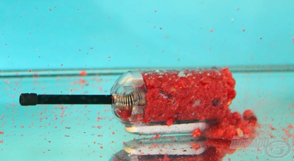 Vízbe kerülve az utoljára belerakott pelletadag viszonylag hamar kioldódik…