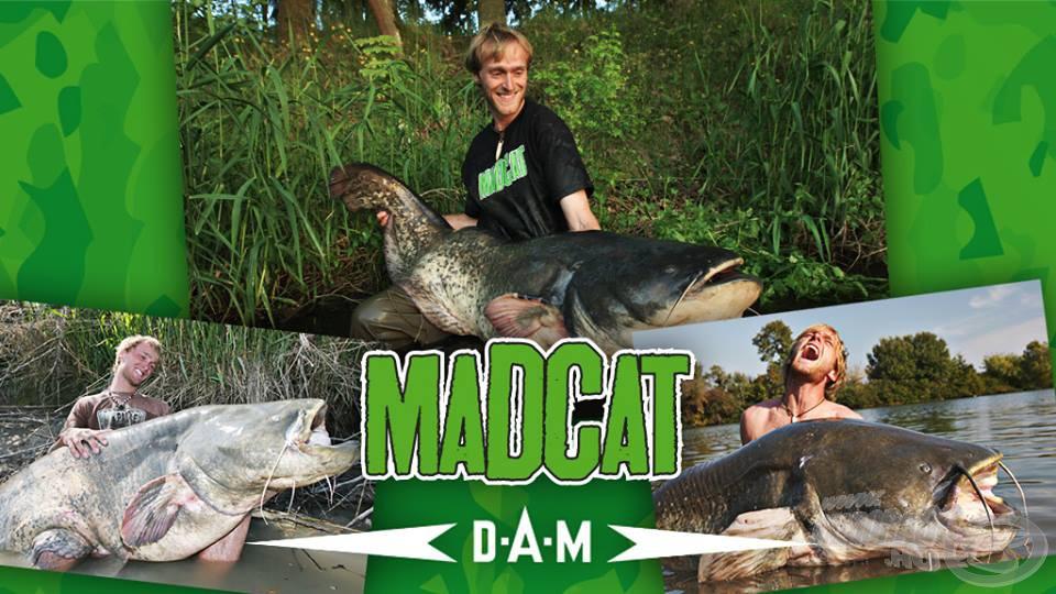 A Mad Cat termékek precíz minőségének hátterében nem csupán a prémium alapanyagok állnak, hanem nagyon komoly fejlesztőmunka és szakmai tapasztalat is. A Mad Cat csapat színvonalát emeli többek közt a világhírű óriáshal-horgász, Jakub Vágner is, akinek neve önmagában is garancia lehet egy-egy termék minőségére! (Forrás: http://swiatkarpia.com)