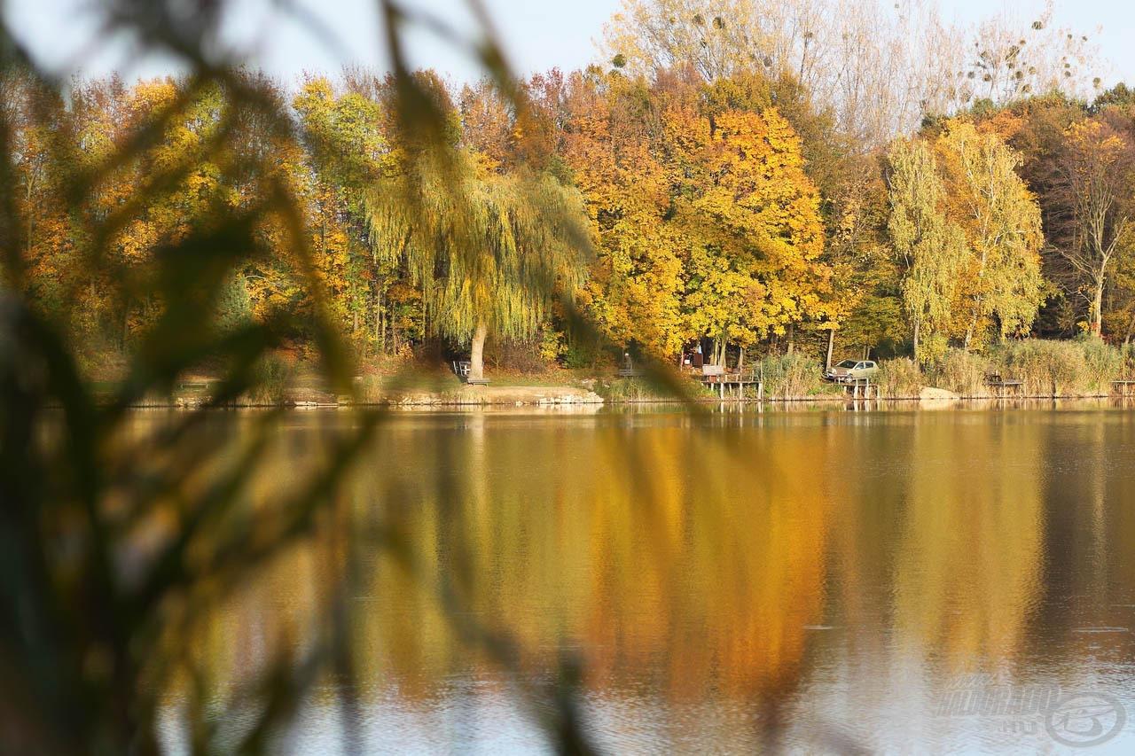 A fák is felvették már az ősz színeit