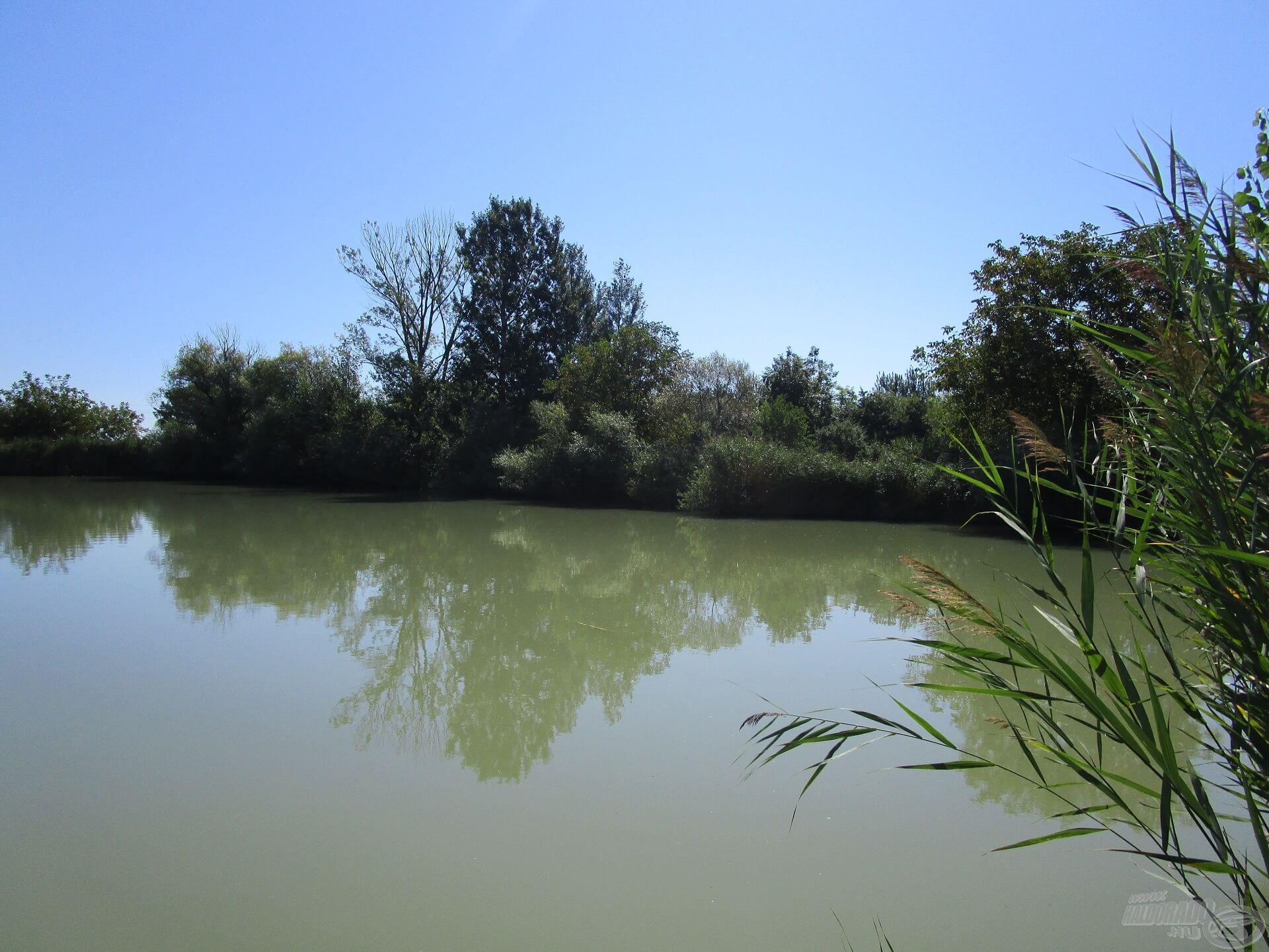A bokrokkal tarkított részek jó haltartó helyek, érdemes legalább az egyik szerelékkel a közelben horgászni!