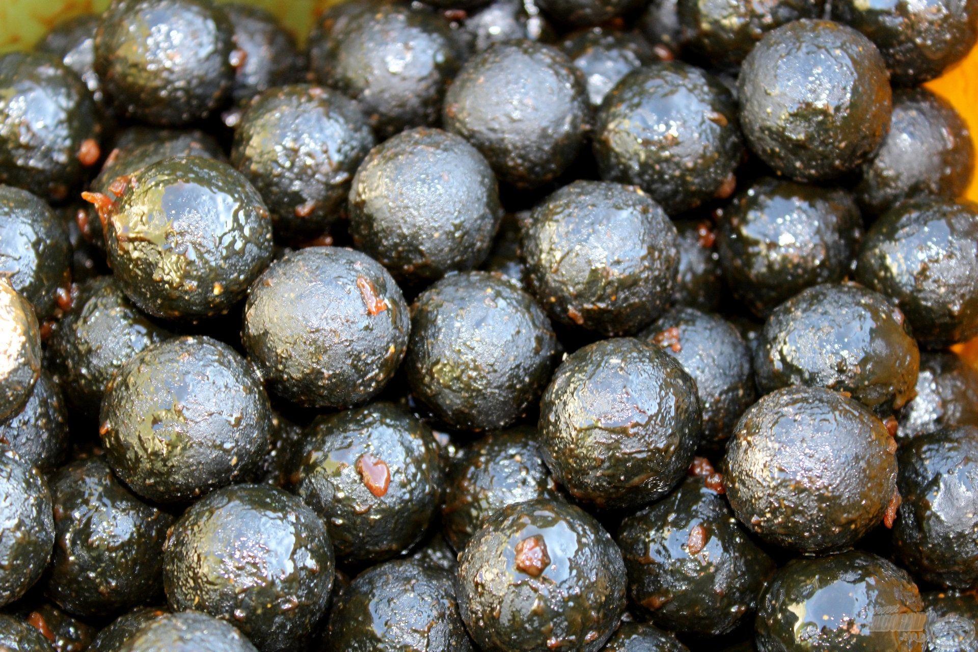 A Fekete Tintahalas bojli képezte etetésem magját és a csalit is