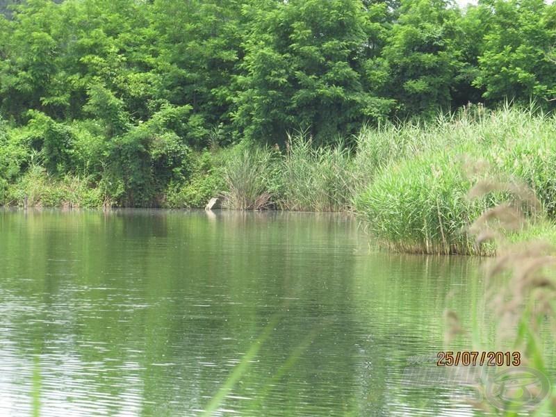 … a vízterület legháborítatlanabb szakasza