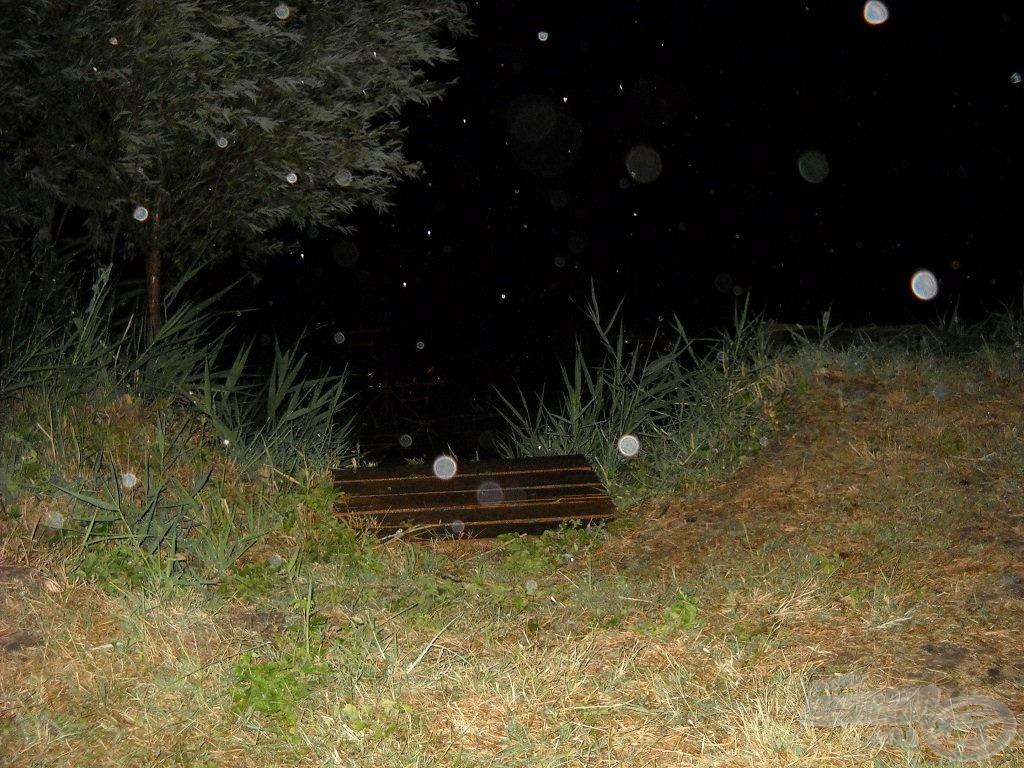 Eső az éjszakában