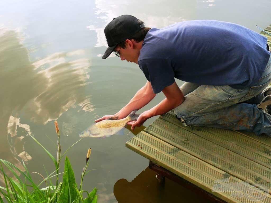 A biztos fogás rajtunk is múlik, ne fosszuk meg a halakat a szaporodás lehetőségétől!