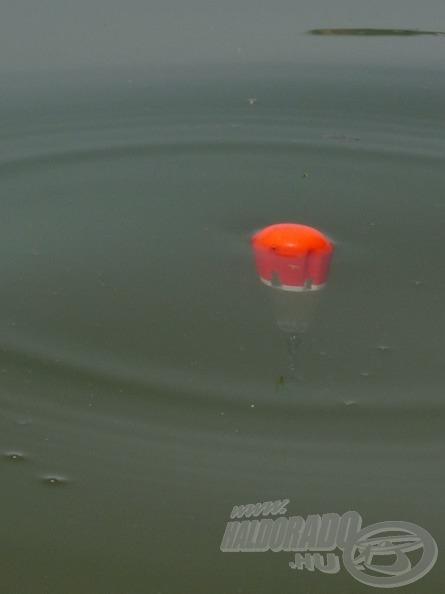 Annyi zsinórt kell adnunk, hogy az úszó megjelenjen a felszínen