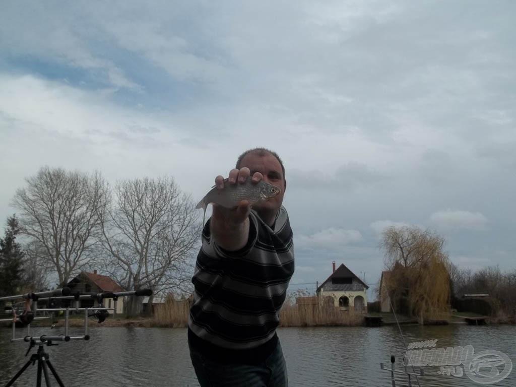 Kértem Baloot, tartsa a halat az objektívbe! Ugye nagyobbnak látszik!?