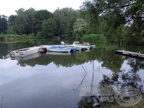 Csónakok nélkül nem is lenne csónakázótó. Más kérdés, hogy horgászni nem szabad belőlük, viszont ez a horgászokat nem zavarja, miként maguk a csónakázók sem
