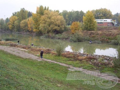 Ez a Benta patak, itt a feszített víztükör, közepes áramlást sejtet, kedvelt pontyozó hely