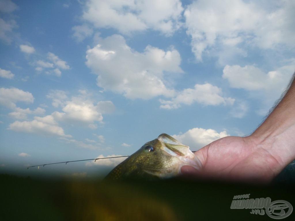 A fotókon keressük a különleges beállításokat - ezekből van a legkevesebb a horgászoldalakon