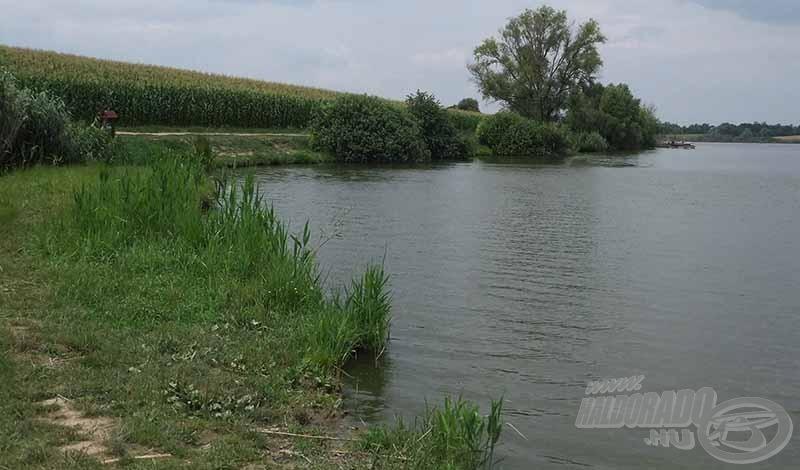 A horgászhelyek mögött meg lehet állni az autókkal