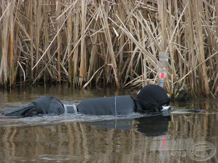 A pipa is egyébként a keszthelyi Tescóból van… Menet közben derült ki, hogy a balinok félnek a bubérkoktól, ezért a palack lekerült Attiláról és az ólomöv-snorkel lett a nyerő