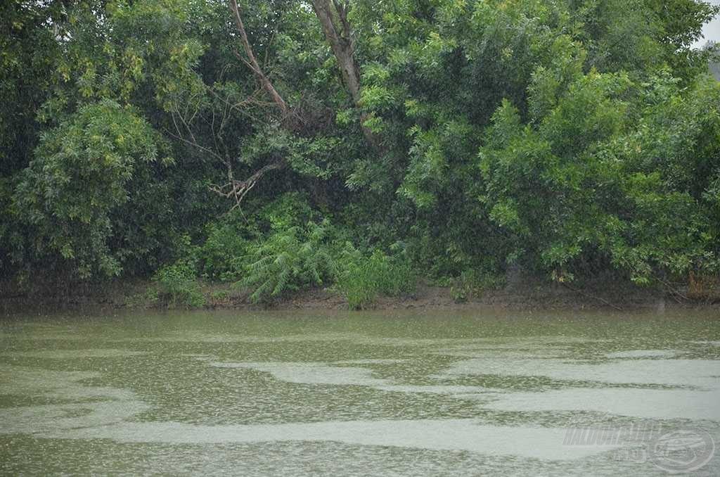 A folyamatos esőzés miatt kissé bezavarosodott a folyó és megemelkedett a vízszint