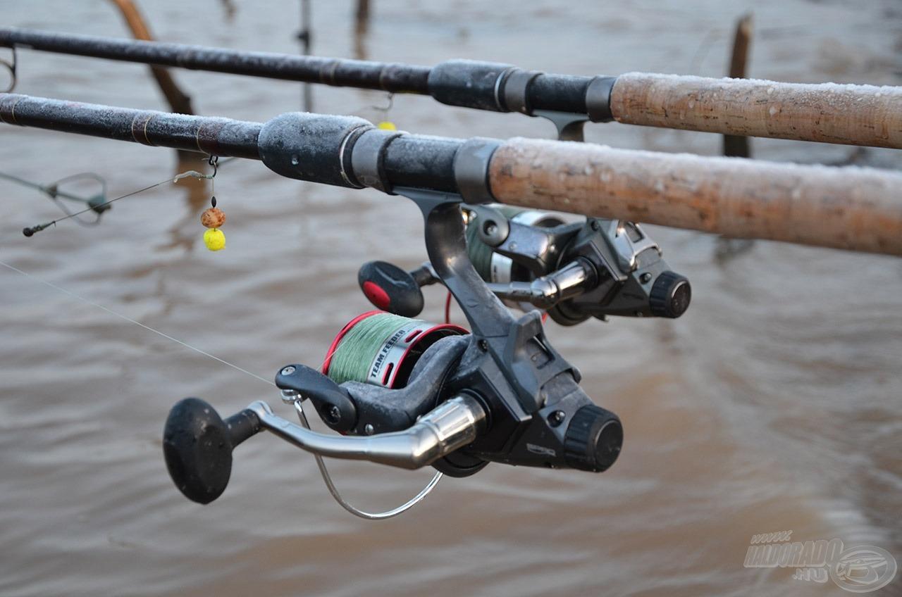 Ennél durvább tesztre nincs szükség! A Spro Team Feeder orsóim a kegyetlen időjárást és a nagy halakkal való küzdelmeket is kibírták…
