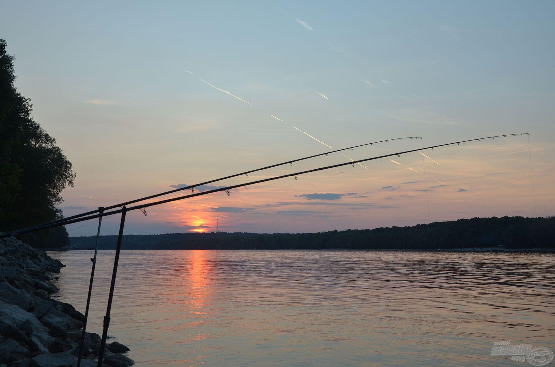 Az erős folyóvízi Master River feederbotok a legnagyobb halakkal is megbirkóznak