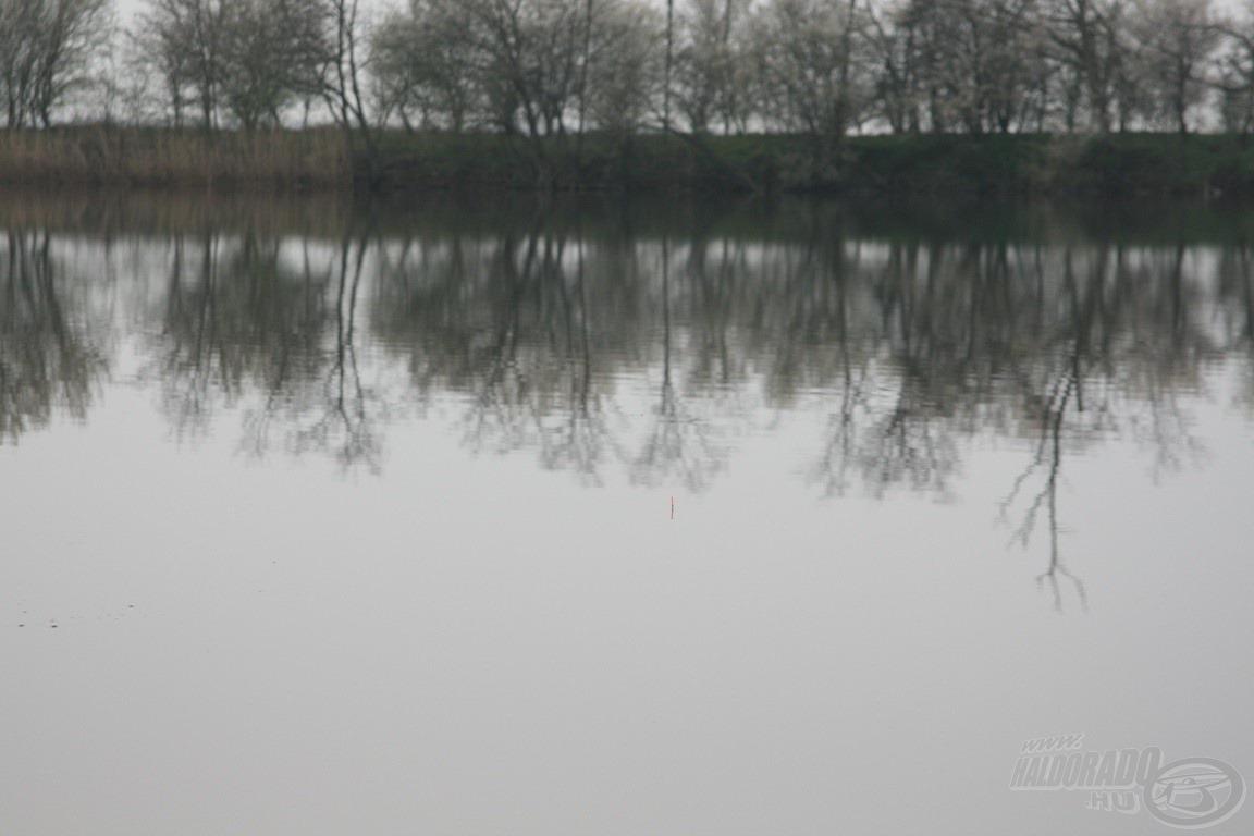 Úszó a helyén