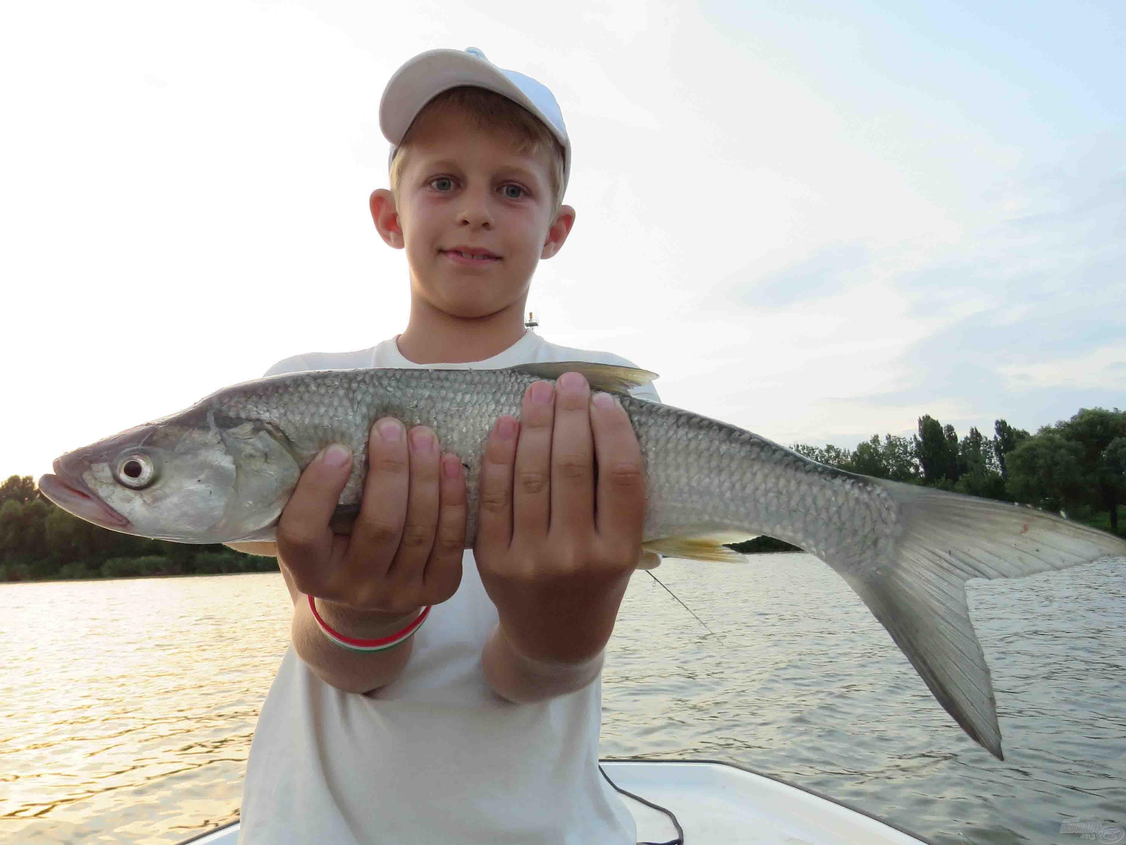 Nyurga test, hatalmas farokúszó – nem csoda, hogy villámgyors halak