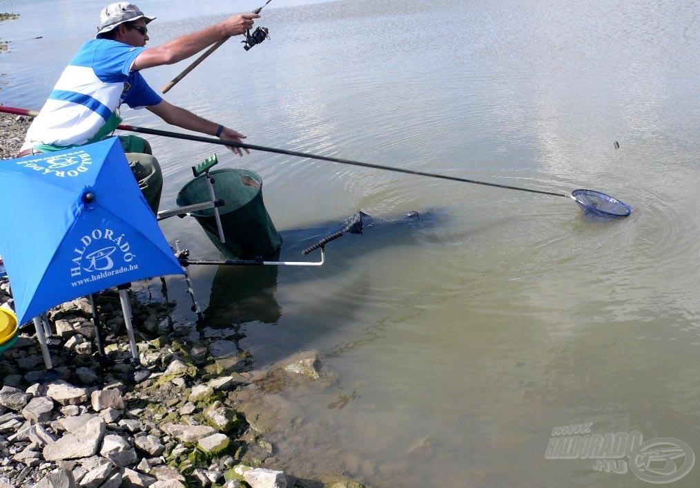 A merítés lassúbb módja a hal kiemelésének, mint a röptetés, de sokkal biztonságosabb!
