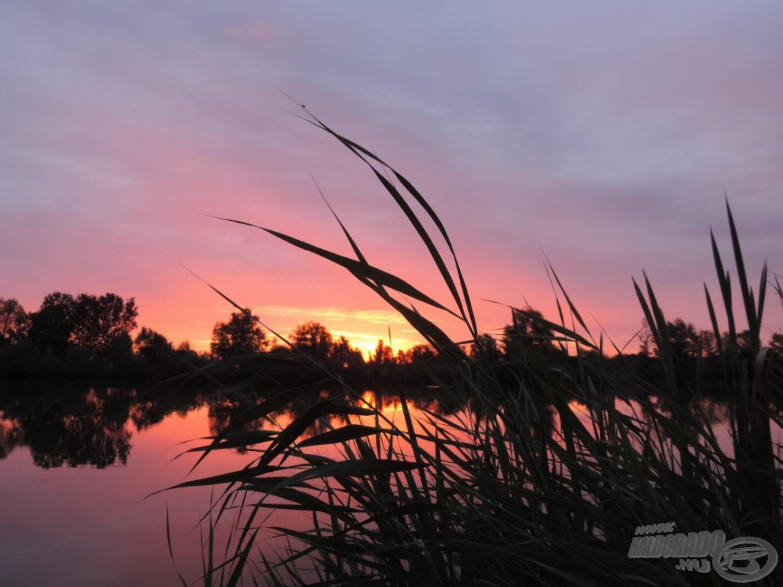 Nem tudtam abbahagyni a fotózást, annyira szép volt az égbolt hajnalban