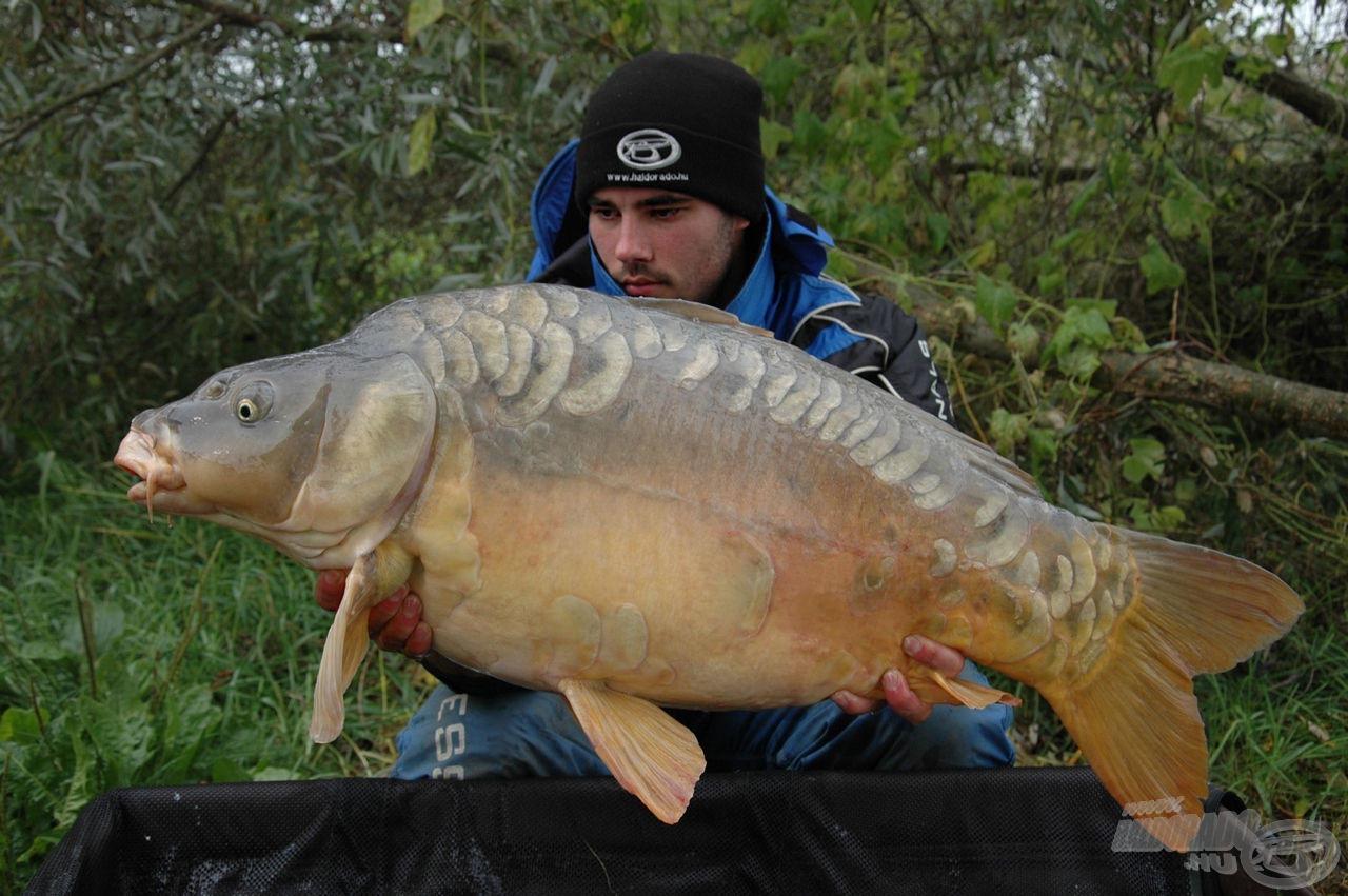 Gyönyörű spanyol pikkelyes 17,72 kg