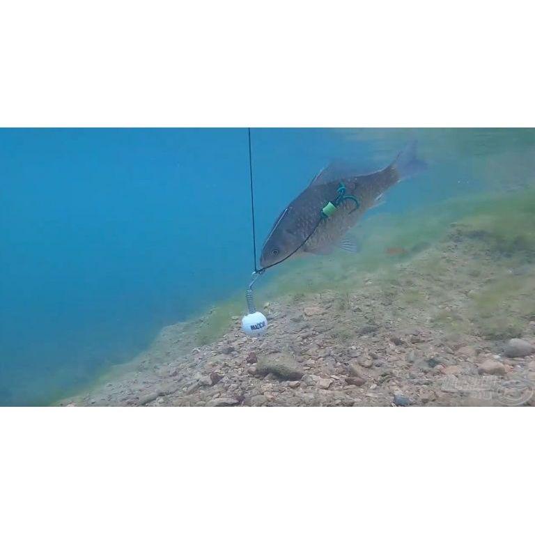 MAD CAT Golf Ball Jig Anti Snag 80+120 g