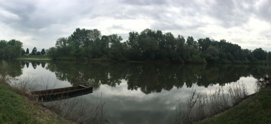 Bodrog folyó